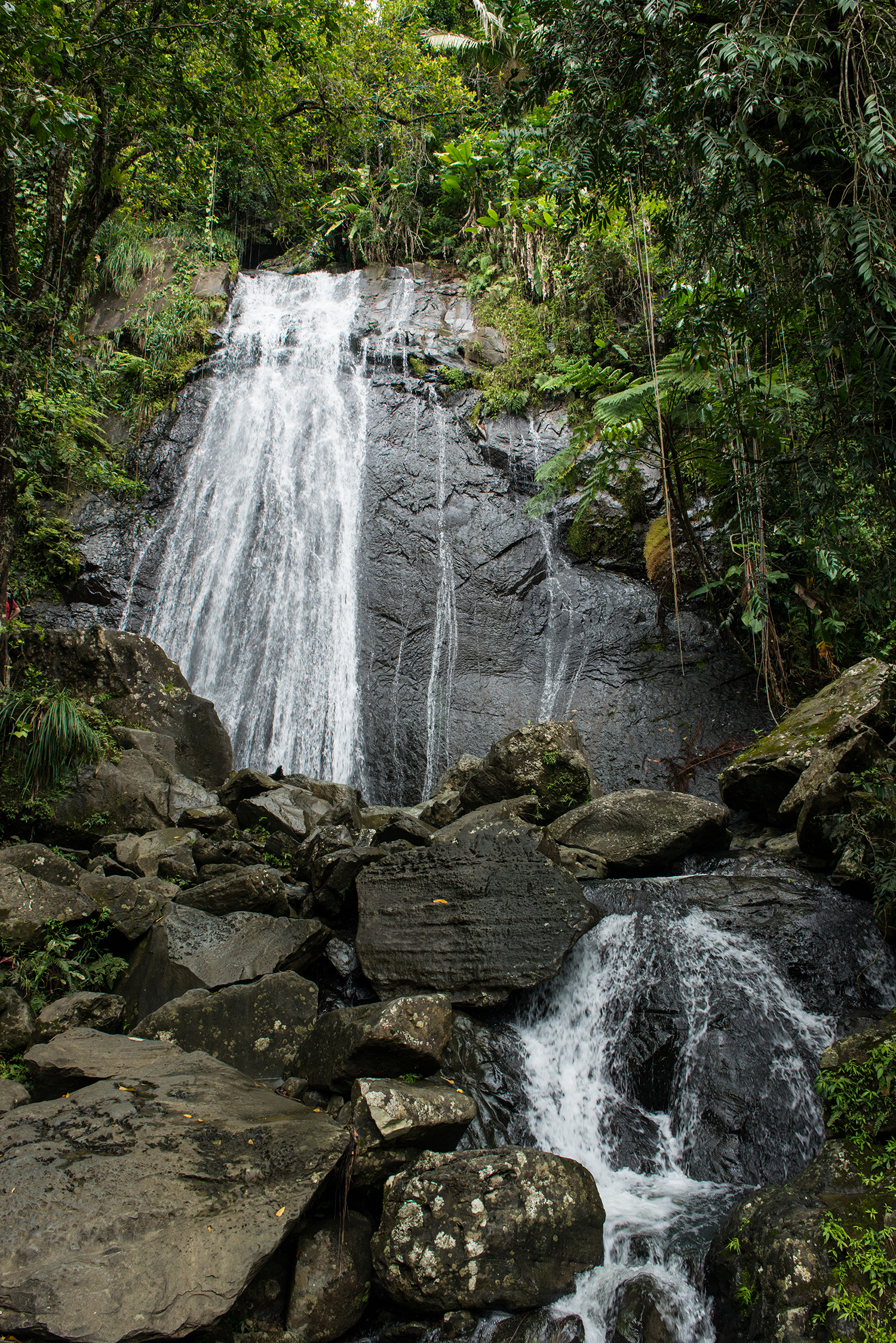 ElYunqueWaterfall