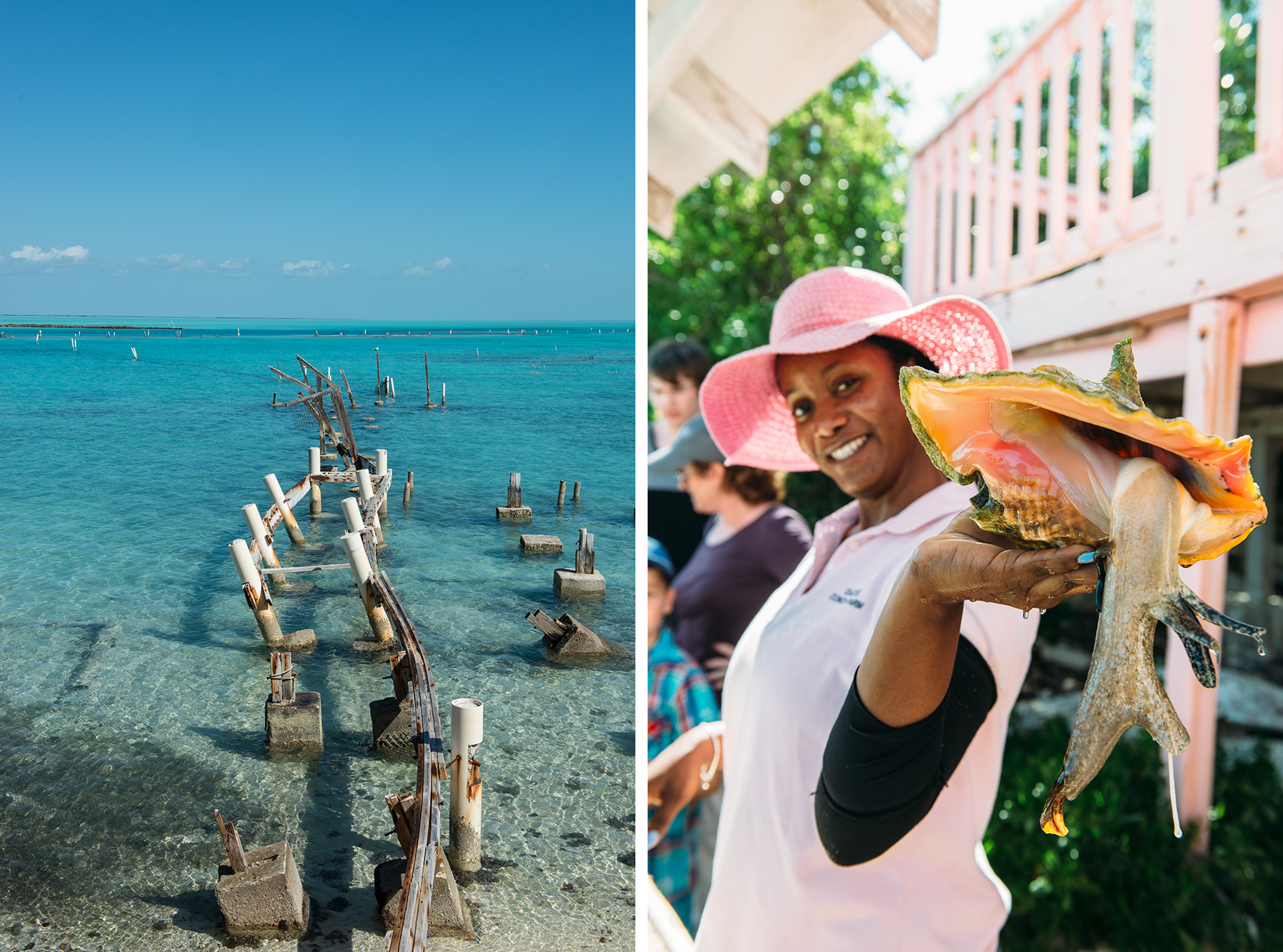 Turks and Caicos Conch Farm