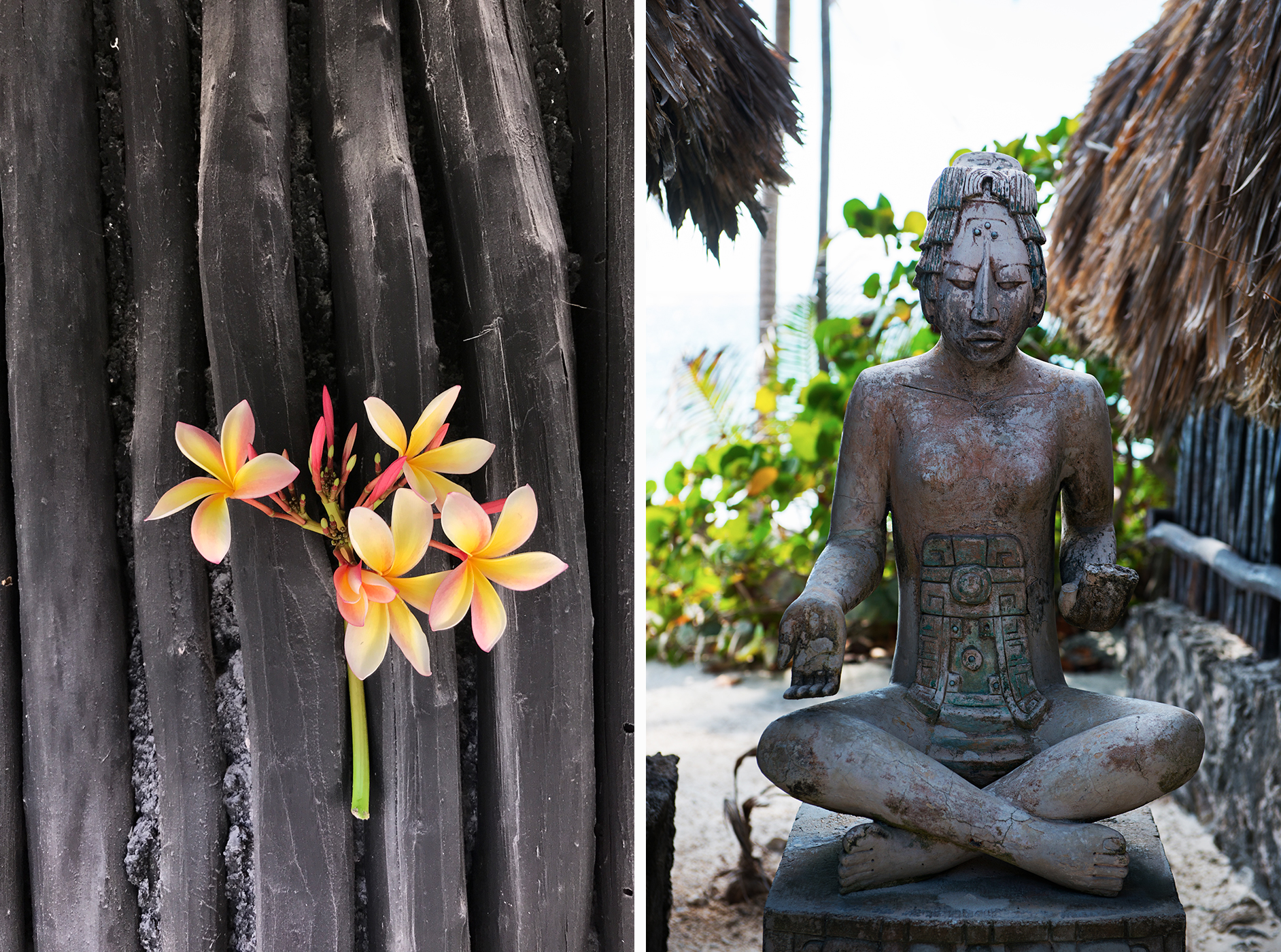 tulum flower and buddha